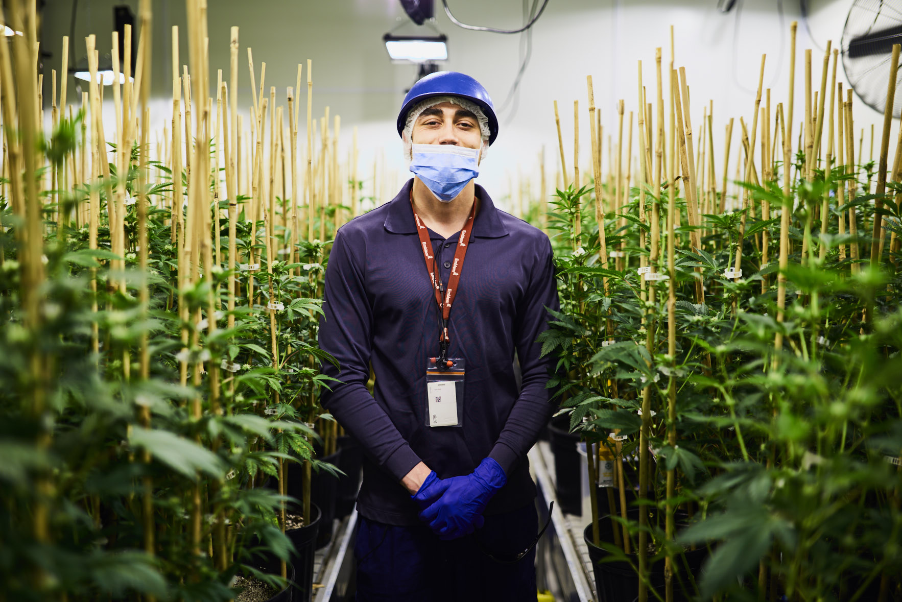 Editorial portrait of Cannabis employee for University of Toronto Medicine Magazine